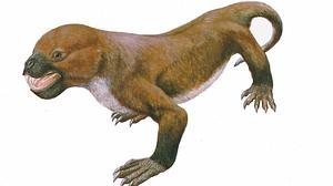 El extraño monstruo japonés mitad reptil, mitad mamífero