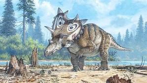 «Judith», un dinosaurio cornudo y con gola