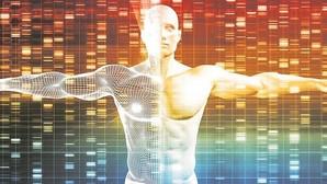 Un genoma humano sintético en diez años