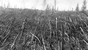 El día en que el cielo de Siberia ardió y se partió en dos