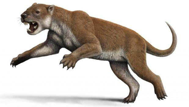 El Thylacoleo carnifex