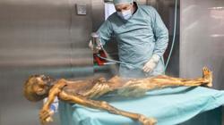 Análisis de la momia de Ötzi