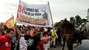 Una plataforma animalista denuncia al Patronato Toro de Vega por «incitar a la desobediencia»