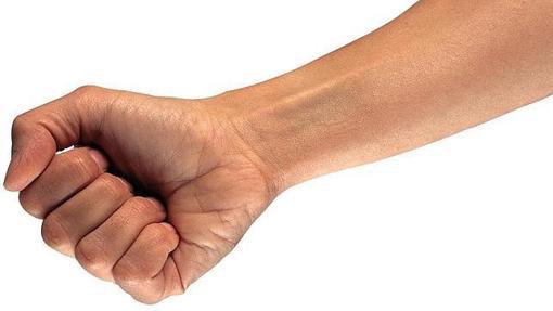 Dos genes regulan la formación de la mano humana