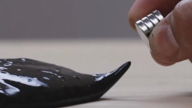 La masa magnética puede engullir un imán, como si fuera una extraña criatura