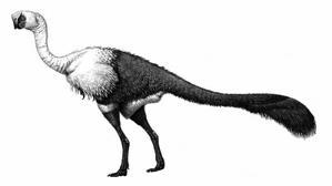 Hallan restos orgánicos en las garras de un dinosaurio de hace 75 millones de años
