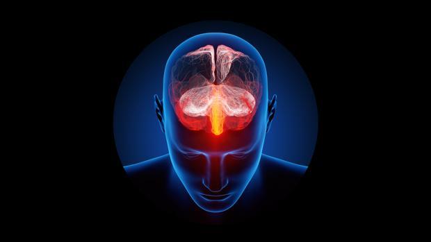 El experimento pretendía utilizar células madre y estimulación para revivir el cerebro