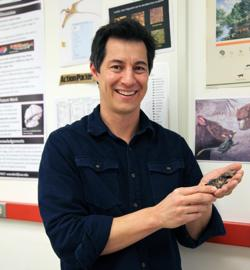 El investigador Gregory Wilson muestra uno de los fósiles