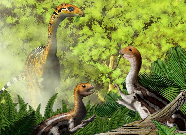 Representación de un Limusaurus adulto (izquierda) y dos jóvenes (derecha). El primero es herbívoro, los otros son carnívoros