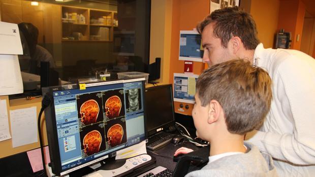 El cerebro sigue creciendo en la edad adulta