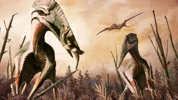 El Hatzegopteryx podía devorar pequeños dinosaurios