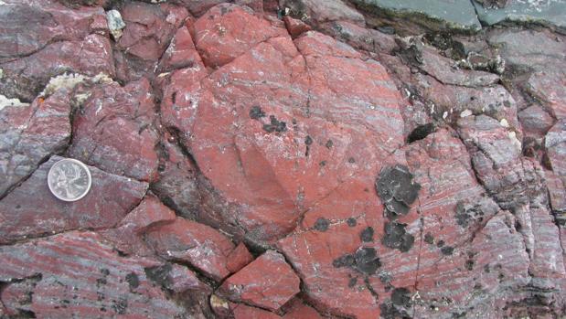 Rocas donde aparecieron los fósiles en Quebec (Canadá)