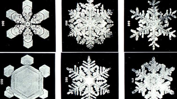 El agua cristaliza formando estructuras con seis brazos
