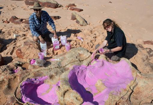 Dos investigadores extraen un molde de silicona de las huellas