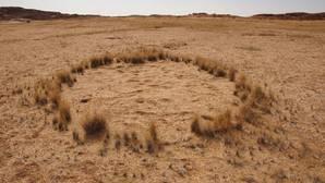 Un círculo de hadas en el desierto de Namibia.