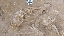 Gatos enterrados en un pozo de Hieracómpolis