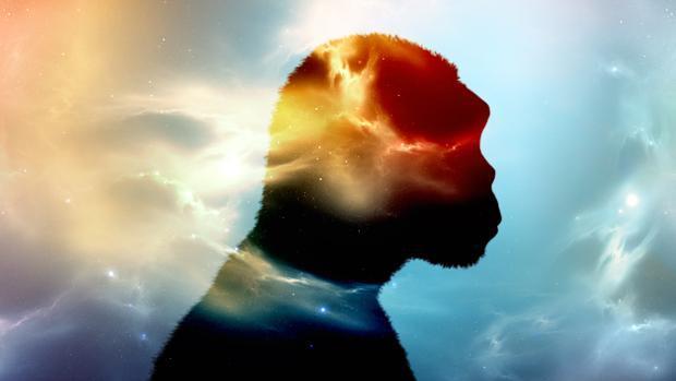 Una especie humana fantasma podría haberse reproducido con los ancestros de poblaciones subsaharianas actuales