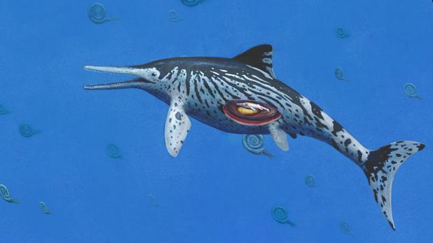 Impresión artística de la hembra de ictiosaurio preñada