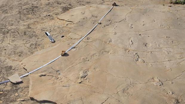 Las polémicas huellas descubiertas en Creta