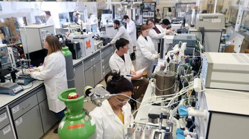 Investigadores implicados en el trabajo