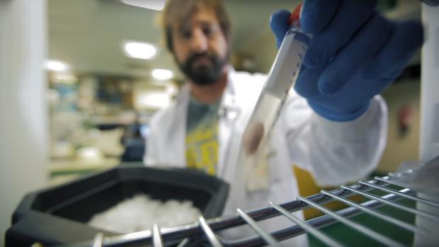 Varias instituciones científicas buscaban solución para renovar el contrato de cerca de un centenar de investigadores