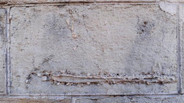 Fotografía facilitada por la Universidad de Barcelona de un detalle de un sillar de la casa Pascual i Pons, de Barcelona, en el que se observa un icnotaxón, es decir, una madriguera fósil que dejó un organismo vivo