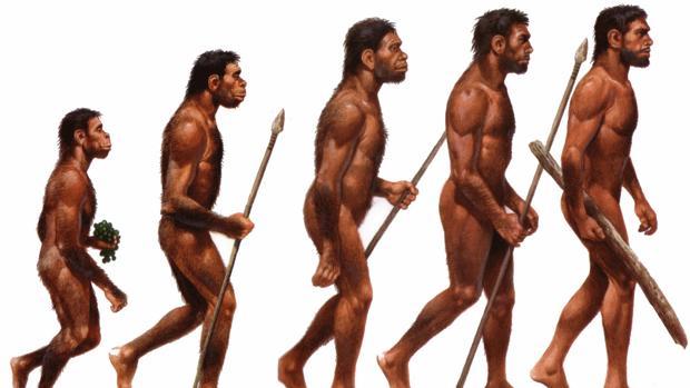 Los investigadores creen que nuestra especie tiene un umbral máximo en sus capacidades biológicas que no puede superar