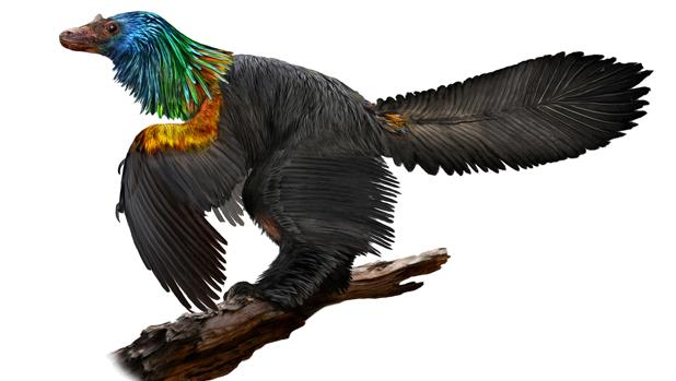 El dinosaurio Caihong juji