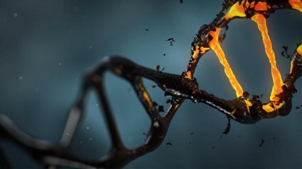 En la actualidad, el proceso de síntesis de secuencias de ADN es caro y laborioso y ralentiza la investigación