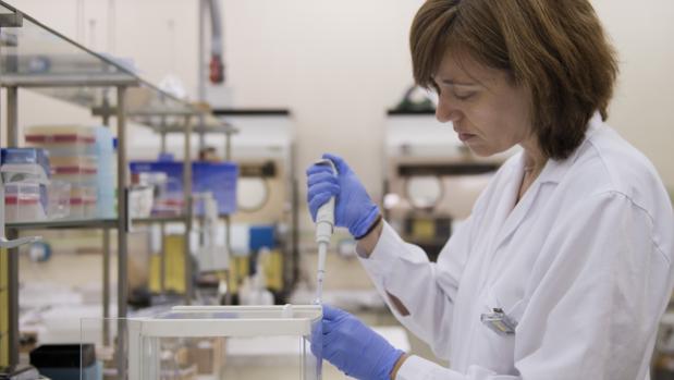 Ahora un investigador de un OPI distinto del CSIC puede cobrar hasta 900 euros mensuales menos que alguien de la misma categoría en el CSIC o la Universidad