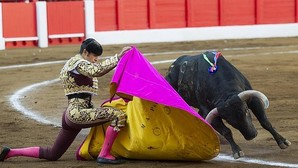 El Parlamento de Cantabria rechaza la proposición de Podemos para prohibir los toros