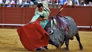 Antonio Ferrera no podrá torear en la Feria de Abril de Sevilla