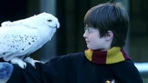 Se subastará por 23.000 euros un ejemplar de Harry Potter con una errata