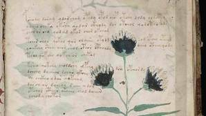 Una editorial española clonará el manuscrito Voynich, el misterioso libro que nadie ha podido descifrar