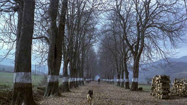 Fotograma de «El sur», de Víctor Erice, filme basado en la novela de Adelaida García Morales