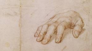 La polémica censura de Facebook a un boceto renacentista en el que aparece una mano carnosa