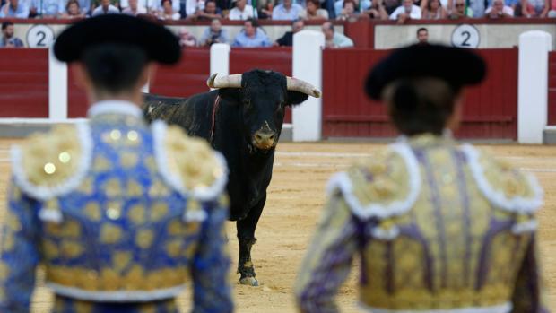 Talavante y El Juli observan el toro