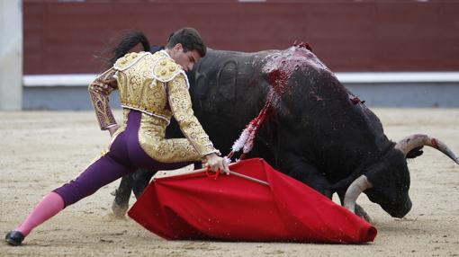 Pinar se dobla con el toro