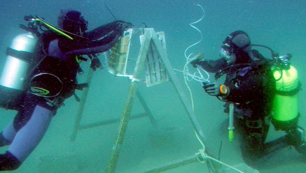 Investigadores de la UCA hallan los restos del 'Fougueux'