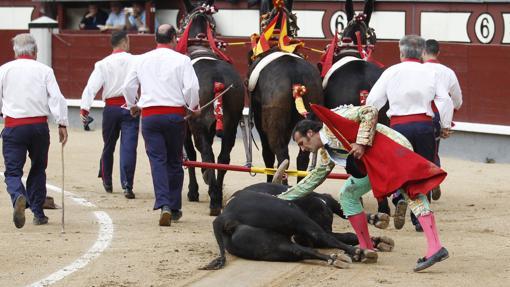 David Mora acaricia al toro de Alcurrucén, premiado con la vuelta al ruedo en el arrastre