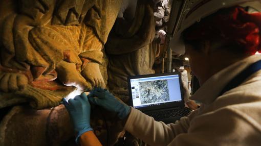 El tratamiento aplicado a las figuras es analizado con videomicroscopios