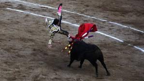 Una cogida a Luque y la ganadería frustran la segunda corrida del Señor de los Milagros