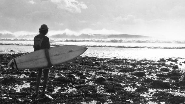 Ajuste de letras:  William Finnegan: adicto a las olas