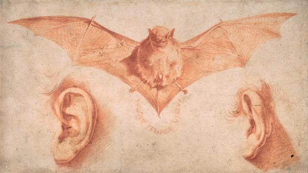 «Un murciélago y dos orejas», de Ribera