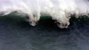 «Si hubiese un tsunami, Cádiz entera tendría que ser evacuada»