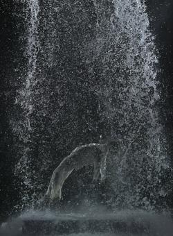«La ascensión de Tristán» (2005)