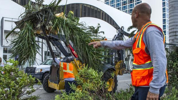 Los operarios trabajan para devolver la normalidad a Miami Beach