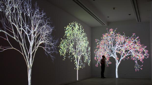La Fundación Telefónica se convertirá en un bosque digital con el sugerente trabajo de Jennifer Steinkamp