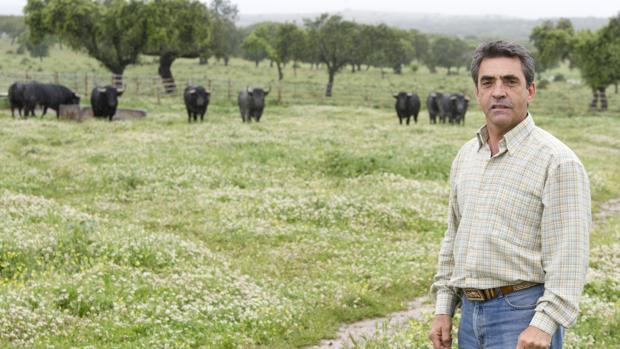El ganadero de lidia Victorino Martín García
