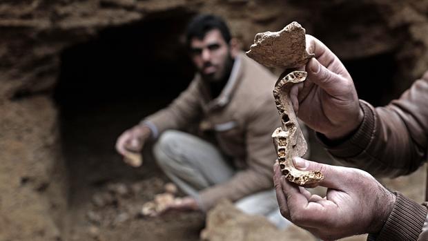 Parte de una mandíbula encontrada en el enterramiento